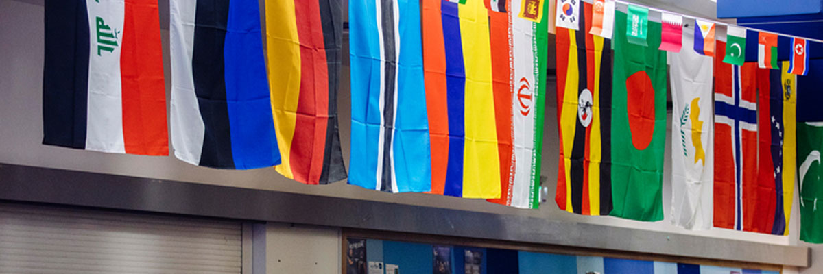 International flags against wall