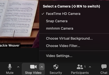 Screenshot showing how to turn off Zoom filters